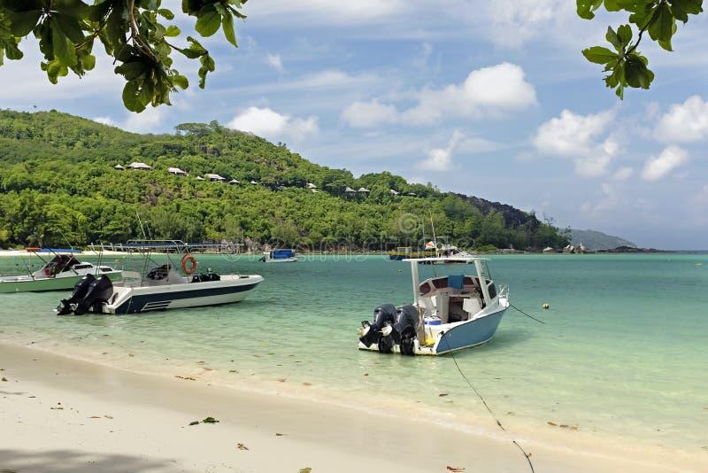 Groot ansestrand bij Eiland Seychellen stock afbeeldingen