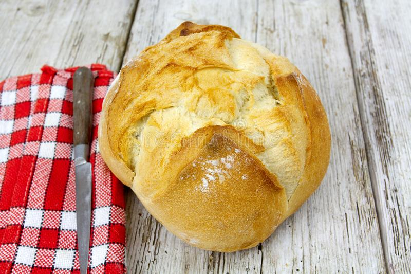 Groot brood stock fotografie