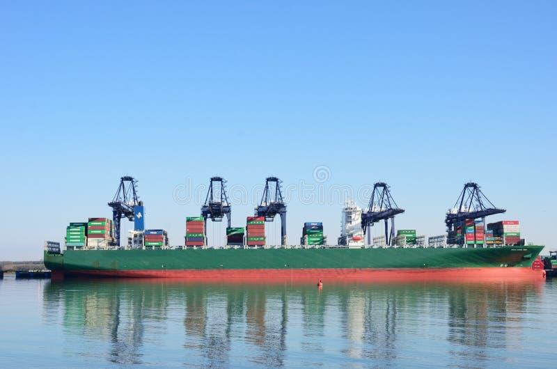 Groot Containerschip in haven met kranen royalty-vrije stock afbeelding