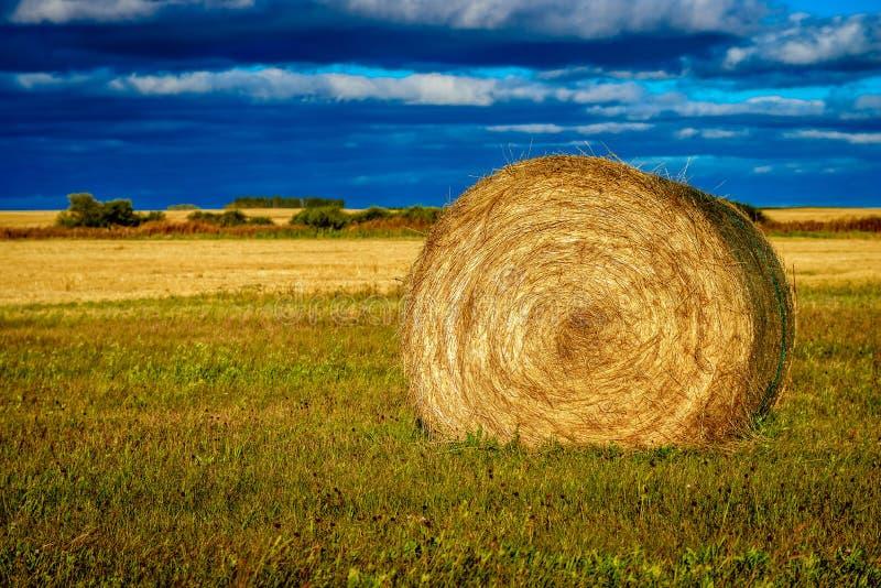 Groot de prairielandschap van het hemelland royalty-vrije stock fotografie