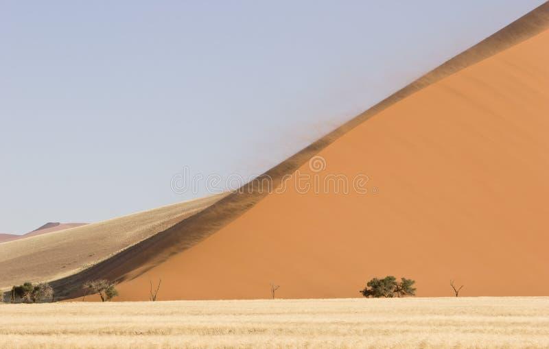 Groot Duin stock fotografie