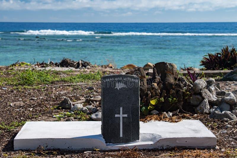 Groot ernstig tropisch de kokosnoten vreedzaam oceaanstrand van de oorlogsveteraan stock afbeelding