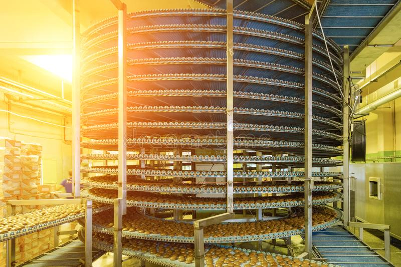 Groot geautomatiseerd om transportbandmachine in de fabriek, de koekjes en de cakesproductielijn van het bakkerijvoedsel stock fotografie
