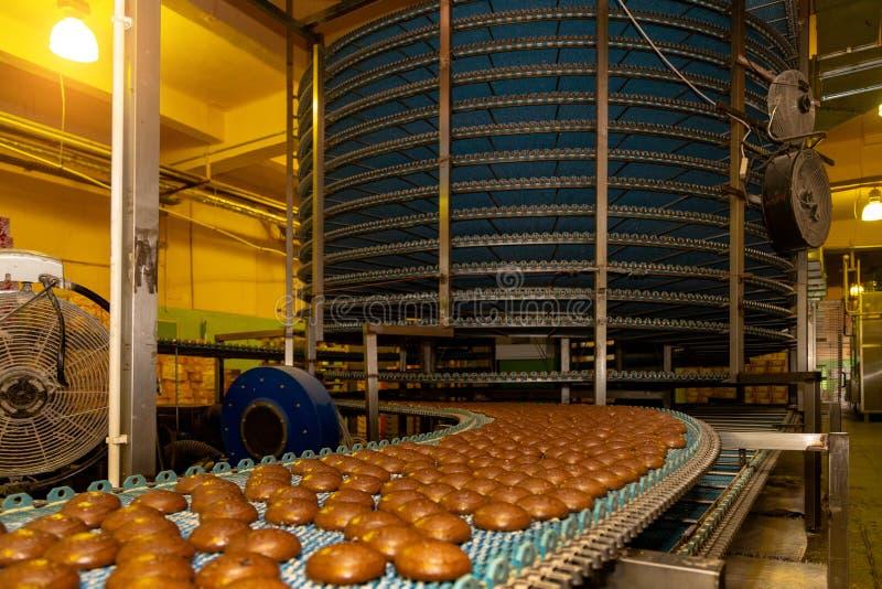 Groot geautomatiseerd om transportbandmachine in de fabriek, de koekjes en de cakesproductielijn van het bakkerijvoedsel royalty-vrije stock fotografie