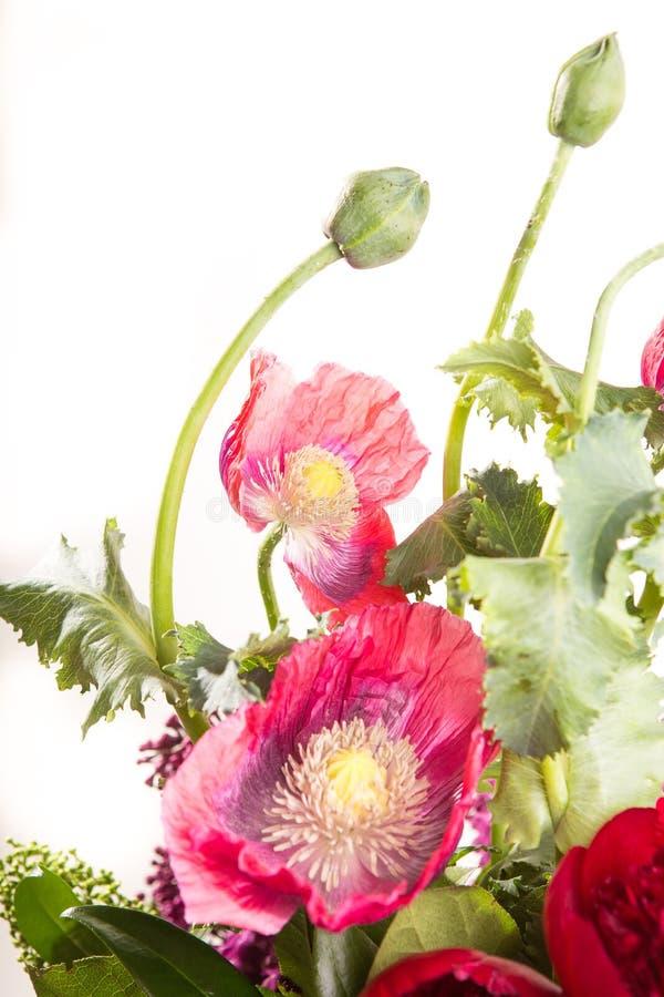 Groot mooi weelderig boeket van bloemen heldere multicolored papaver, pioen en sering in een transparante vaas op een wit royalty-vrije stock afbeelding