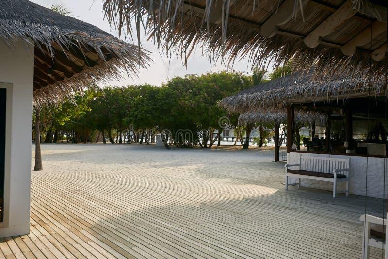 Groot natuurlijk houten vloerterras bij tropisch eiland met palmen en bungalowwen op achtergrond, ruimte voor tekst of stock foto's