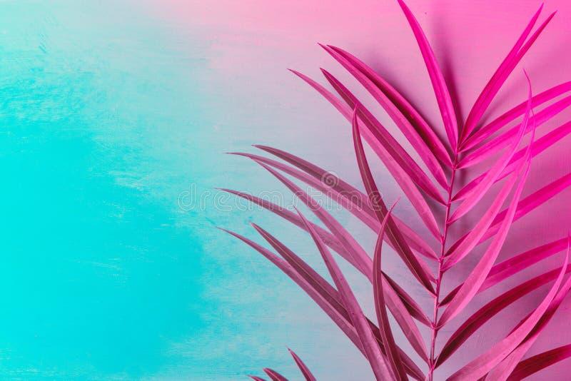 Groot palmblad op duotone purpere violette blauwe achtergrond In neonkleuren gestemd Minimalistische stijl Eigentijdse unieke cre stock foto