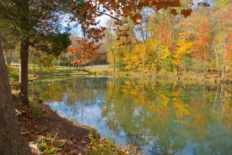 Groot Ridge State Park royalty-vrije stock foto's