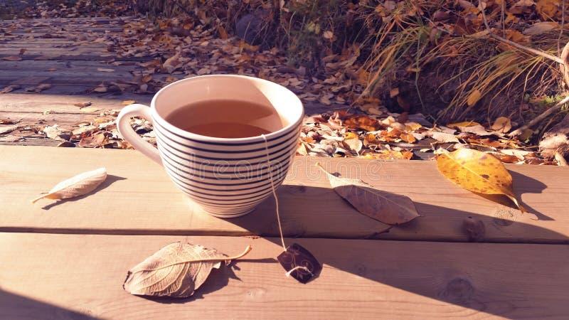 Groot theekopje met organische groene thee op natuurlijke houten oppervlakte een verse en comfortabele dalingsochtend buiten in w stock fotografie