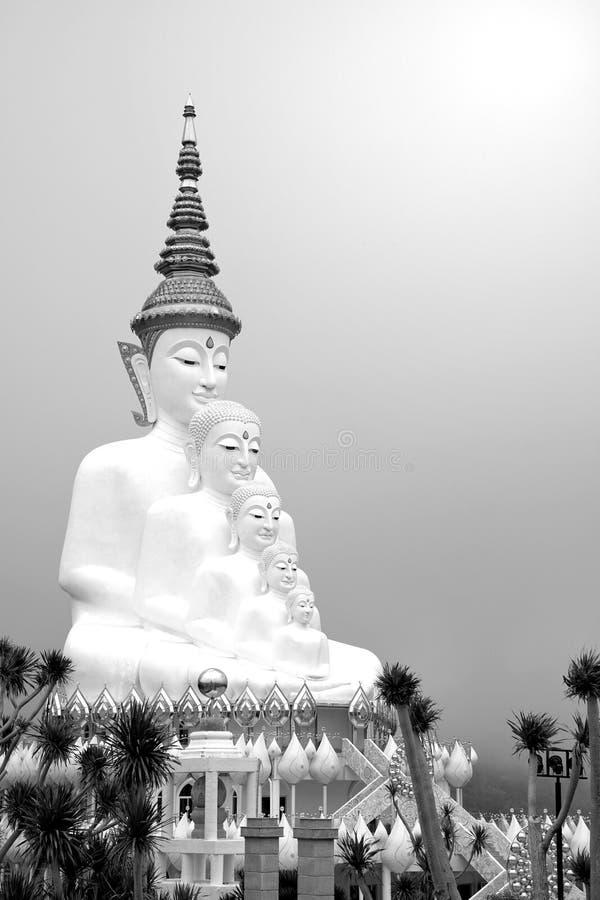 Groot vijf wit Boedha standbeeld op bewolkte hemelachtergrond royalty-vrije stock foto's