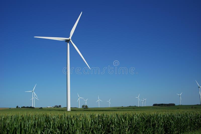 Groot Windlandbouwbedrijf stock afbeeldingen
