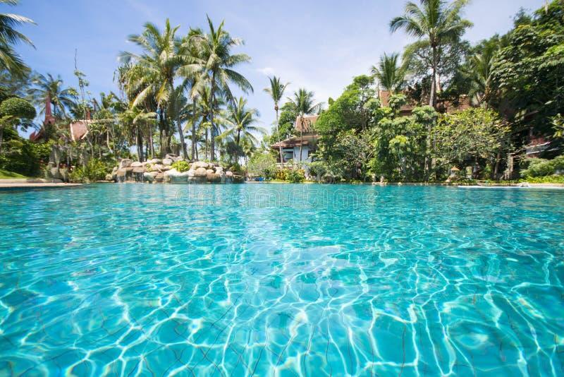 Groot zwembad in tropische toevlucht royalty-vrije stock afbeelding