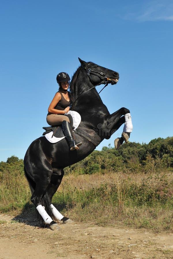 Grootbrengend paard royalty-vrije stock afbeeldingen