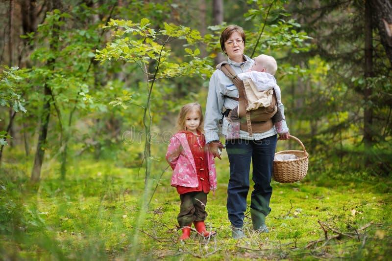 Grootmoeder en haar meisjes die paddestoelen plukken royalty-vrije stock foto