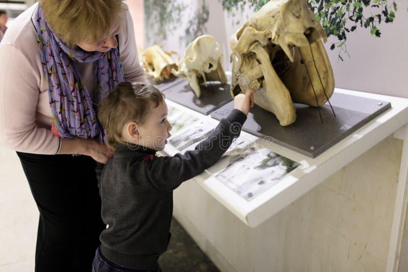 Grootmoeder met kleinzoon in museum stock foto's