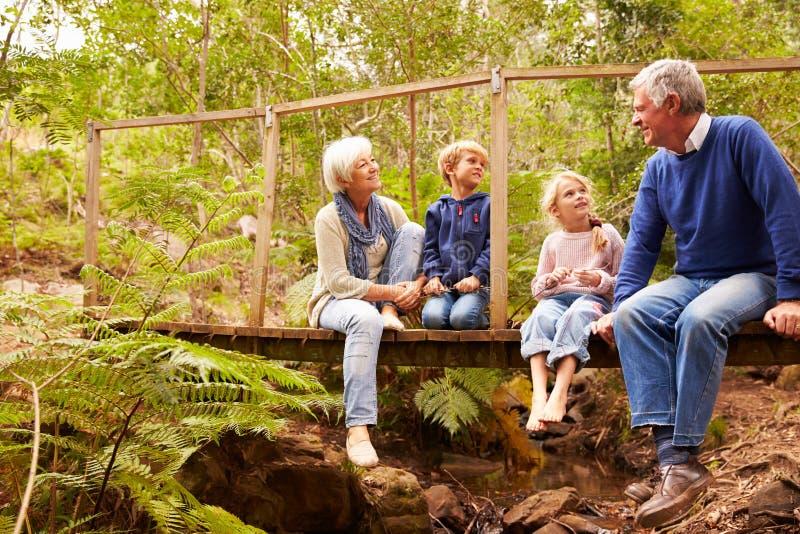 Grootouders die met grandkids op een brug in een bos zitten stock foto