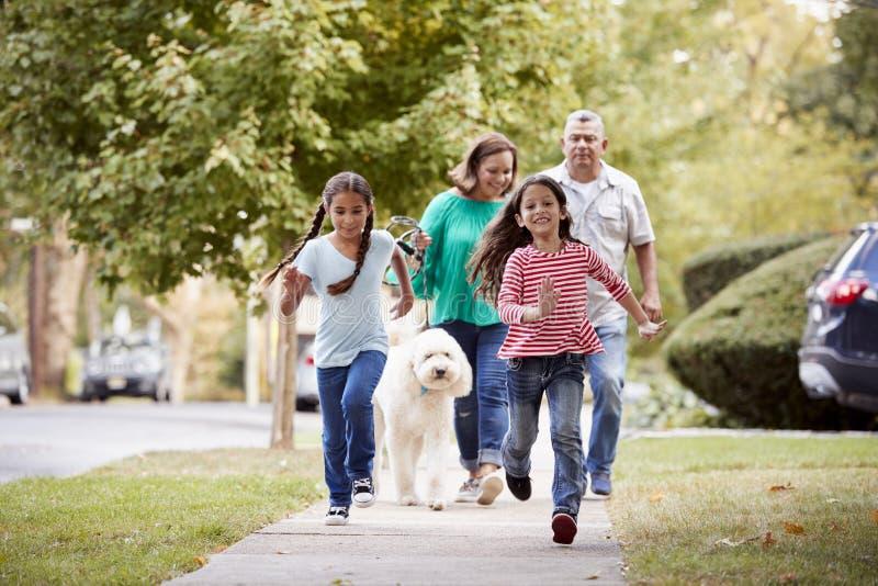 Grootouders en Kleindochters die Hond langs Straat lopen royalty-vrije stock foto's