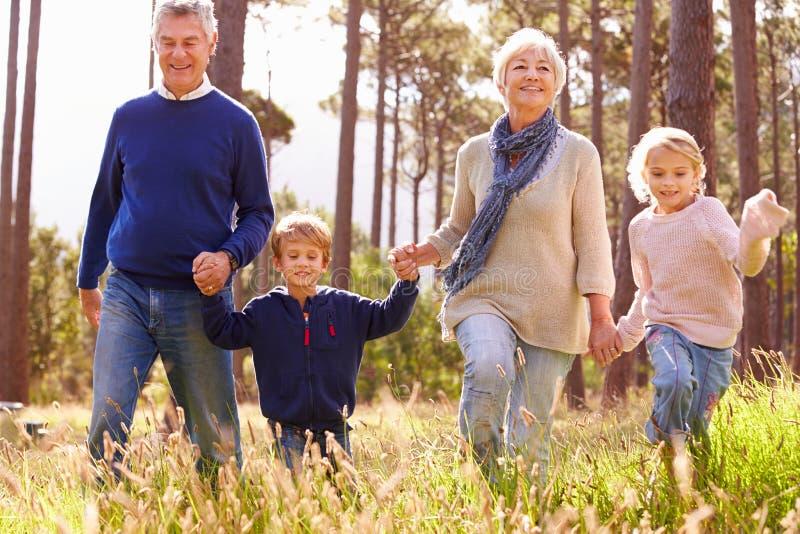 Grootouders en kleinkinderen die in het platteland lopen stock foto's