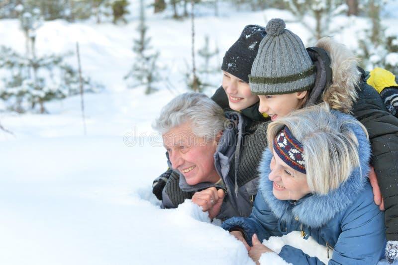 Grootouders en kleinzonen die pret hebben royalty-vrije stock fotografie