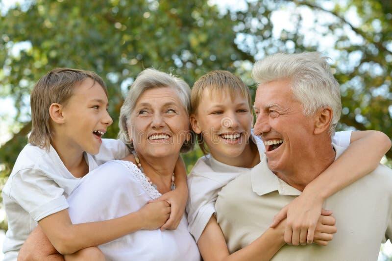 Grootouders met kleinzonen die pret hebben royalty-vrije stock afbeelding