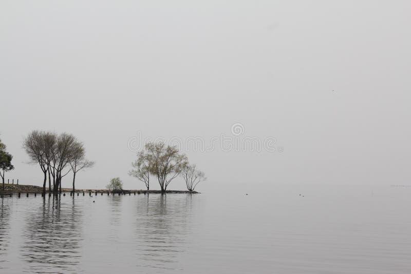 Grootste meer in Japan in Nagahama stock foto's