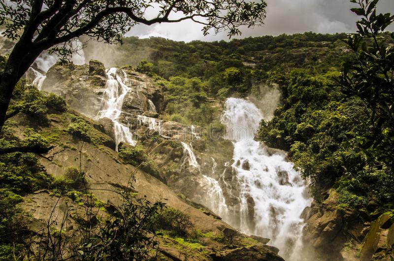 Grootste waterval in India stock foto's