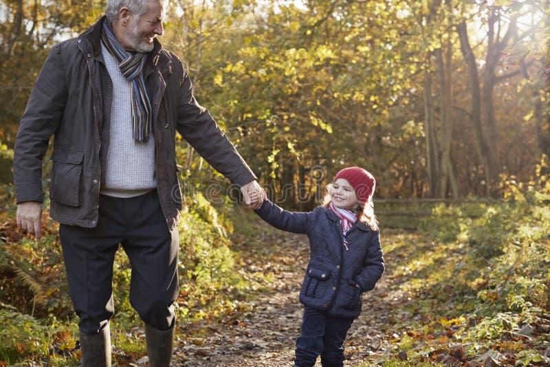 Grootvader en Kleindochter die van Autumn Walk genieten stock foto's