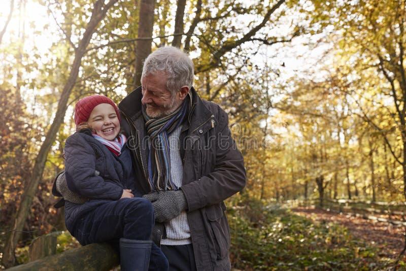 Grootvader en Kleindochter die van Autumn Walk genieten royalty-vrije stock foto