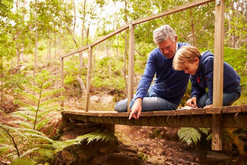 Grootvader het spelen met kleinzoon op een brug in een bos stock foto's