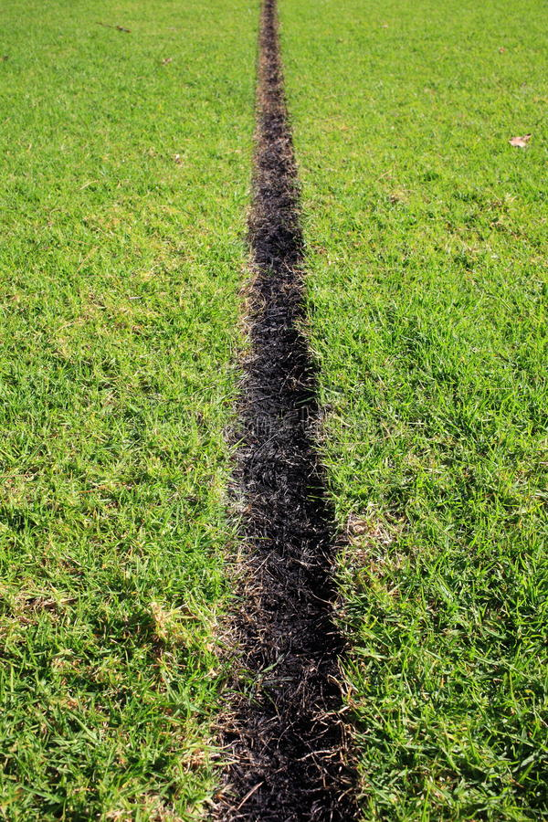Furrow in grass burn-in. A straight-lined furrow in the lawn of a sports field made through a burn-in method (in Australia) royalty free stock photography