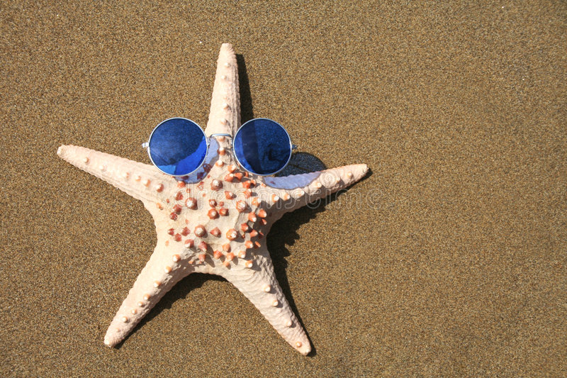 Groovy Starfish. Starfish wearing 1960s sunglasses royalty free stock images