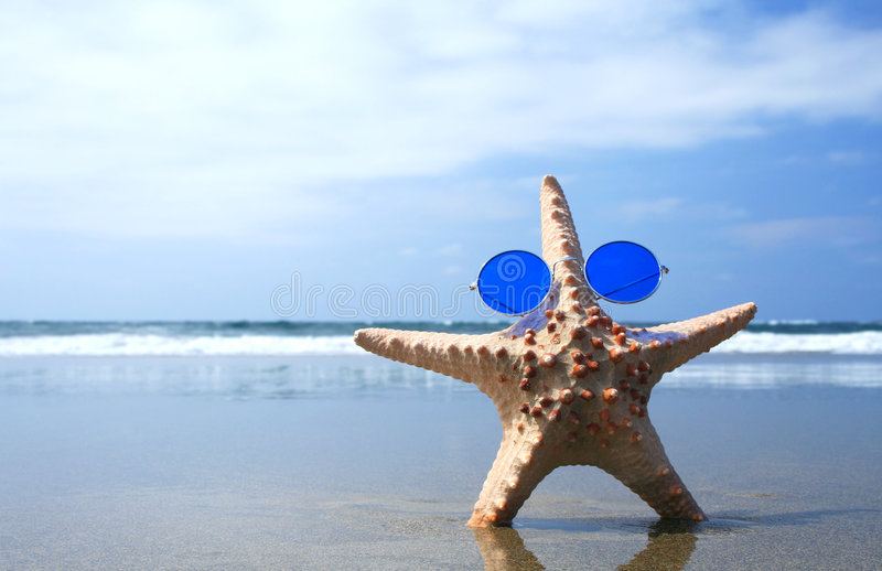 Groovy Starfish stock photo