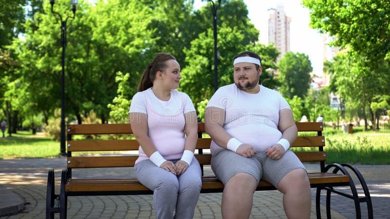 Gros jeune homme et femme faisant la première étape dans la connaissance, obtenant plus étroitement, flirt photo stock