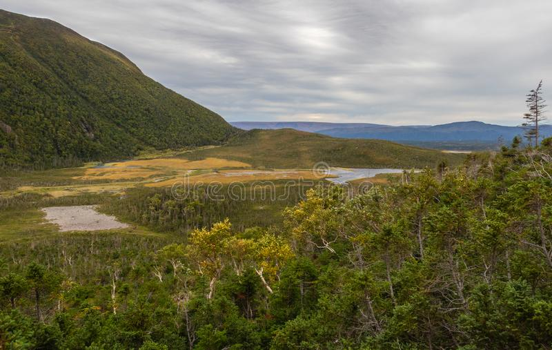Gros Morne Mountain Ponds. Ponds on Gros Morne Mountain Trail in Gros Morne National Park in Newfoundland, Canada Late fall on a stormy windy day. Mountains and royalty free stock photos