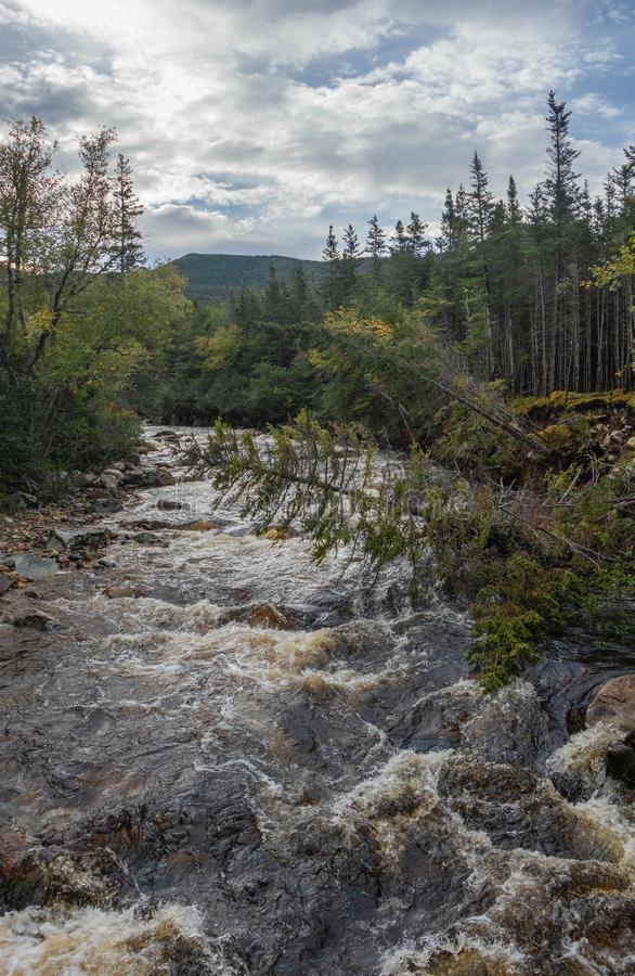 Gros Morne Mountain River. River crossing Gros Morne Mountain Trail in Gros Morne National Park in Newfoundland, Canada Late fall on a stormy windy day stock image