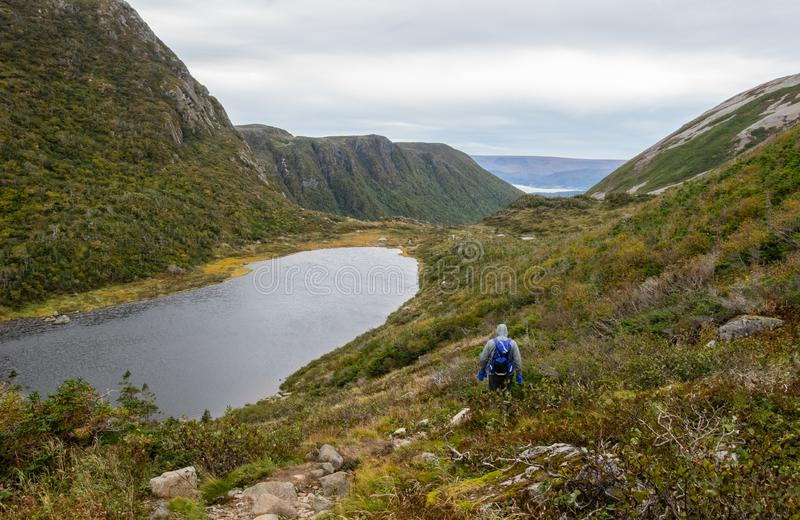 Gros Morne Mountain Hiker. Gros Morne Mountain Trail in Gros Morne National Park in Newfoundland, Canada Late fall on a stormy windy day. Mountains and valleys stock photos