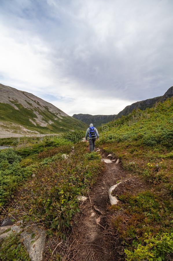 Gros Morne Mountain Trek. Hiker nearing end of Gros Morne Mountain Trail in Gros Morne National Park in Newfoundland, Canada Late fall on a stormy windy day stock photos