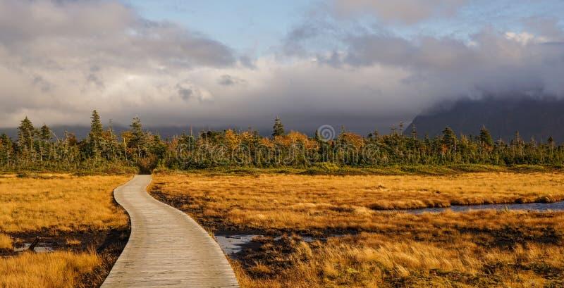 Gros Morne National Park i Newfoundland, Kanada arkivbilder