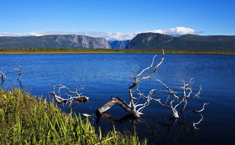 Gros Morne National Park, Terra Nova imagens de stock