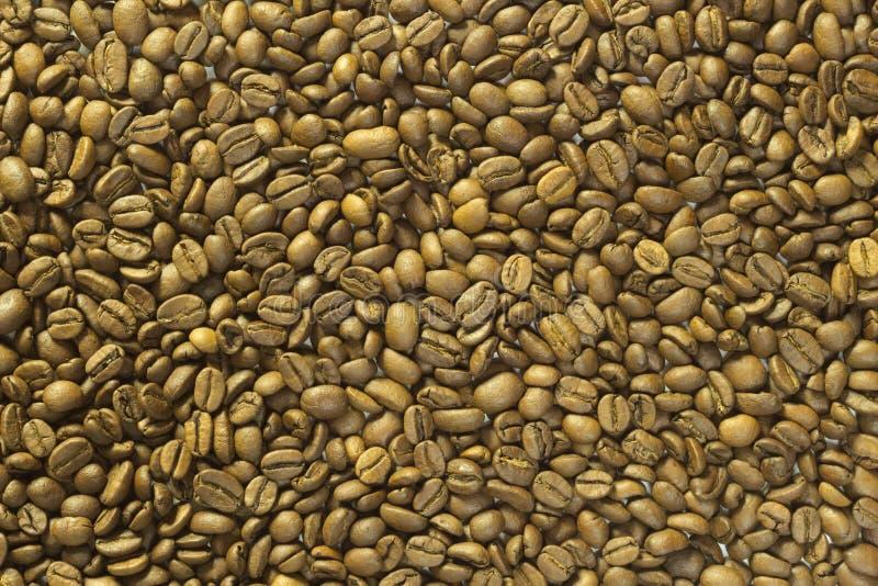 Gros plan des fèves de café, image de fond images libres de droits