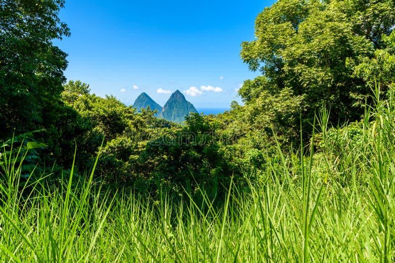 Gros y pitones pequenos cerca del pueblo Soufriere en la isla caribe?a St Lucia - tropical y paisaje del paisaje del para?so en S imagen de archivo libre de regalías