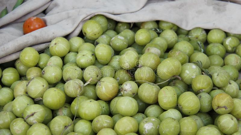 Groseille à maquereau d'Inde Herbes sur le marché local image libre de droits