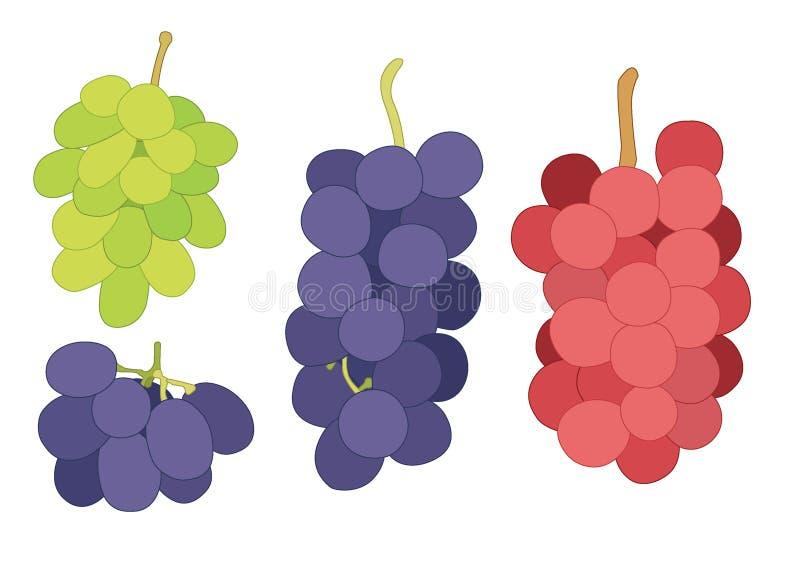 Groseille de raisin et fruit de raisin sec frais sur le fond blanc illustration de vecteur