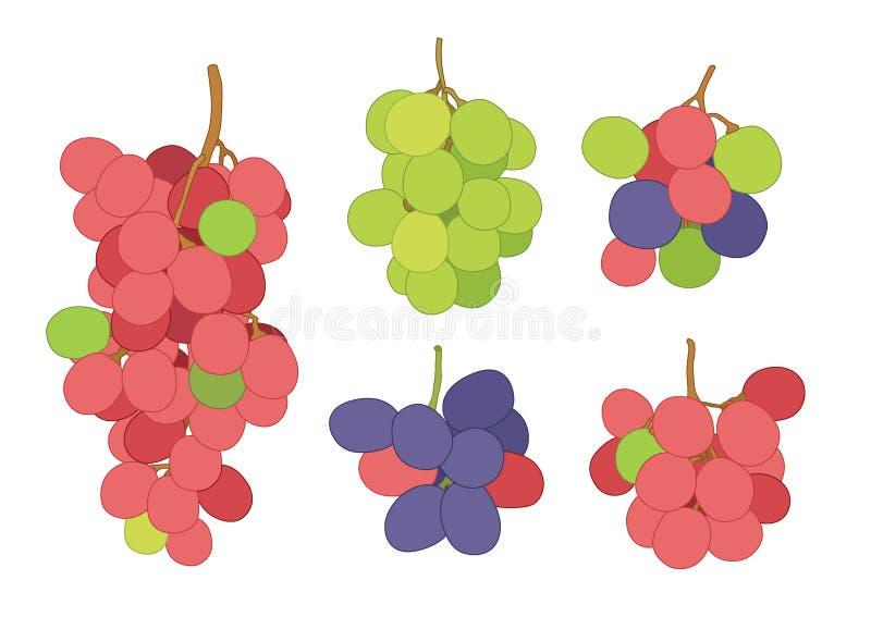 Groseille de raisin et fruit de raisin sec frais illustration stock