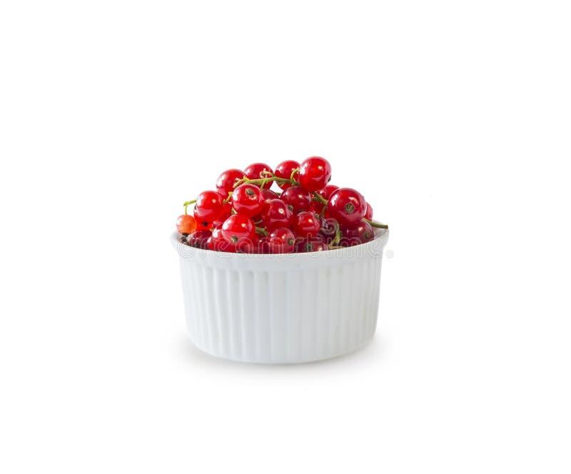 Groseille rouge d'isolement sur le coupe-circuit blanc de fond Groseille rouge dans une cuvette avec l'espace de copie photo libre de droits