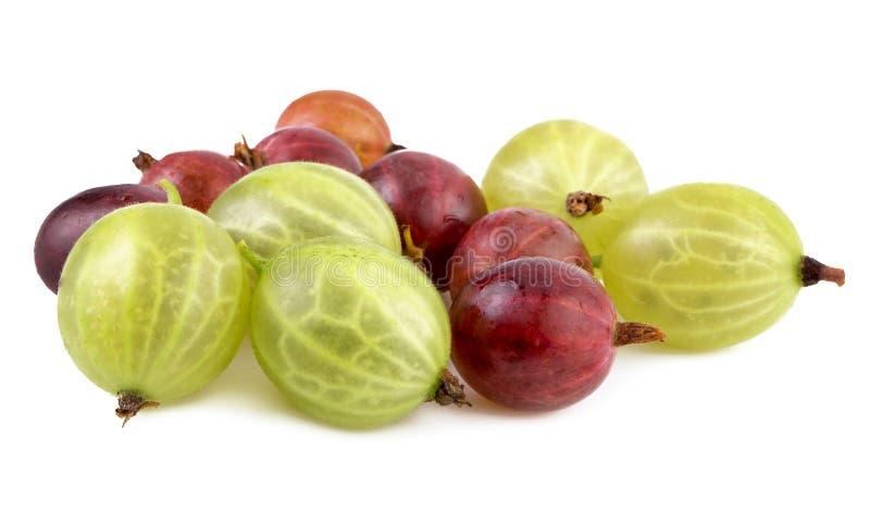 Groseilles à maquereau vertes rouges image libre de droits