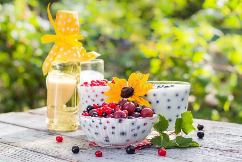 Download Groseilles De Fruit De Cocktails De Jardin De Ressort Image stock - Image du délicatesse, sain: 76090781