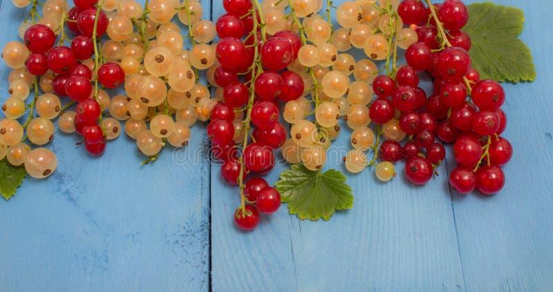 Download Groseilles Et Blanches Sur Un Conseil Bleu Image stock - Image du fruit, bleu: 56482295