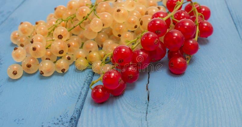 Download Groseilles Et Blanches Sur Un Conseil Bleu Photo stock - Image du nutrition, repas: 56482424
