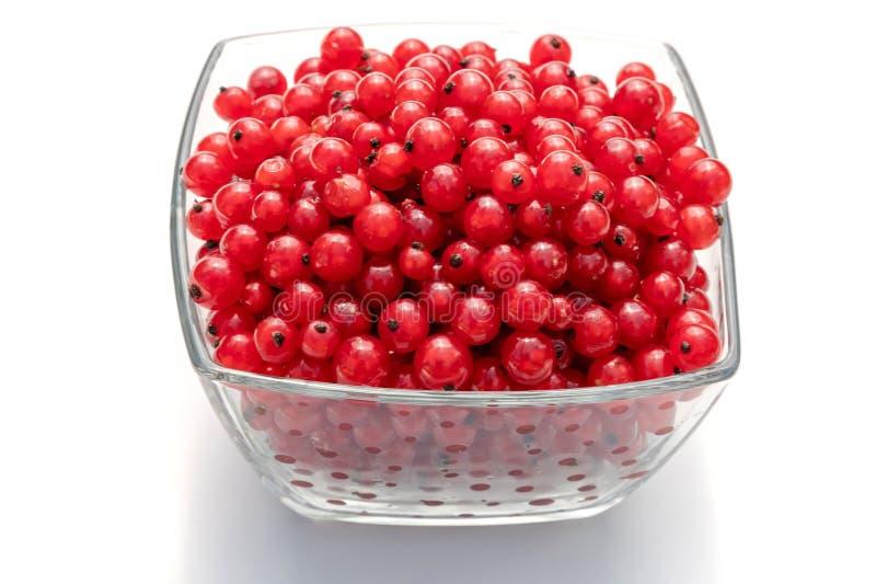 Groseilles rouges dans le bol en verre d'isolement sur le fond blanc images libres de droits